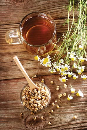 chamomile tea and flowers